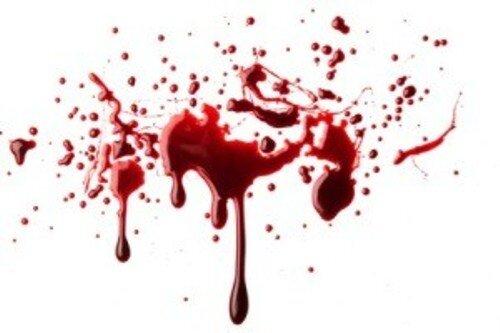 بعد از قتل سیامک، معلوم شد که 2 زن داشته/ هر دو همسر او درخواست قصاص دادند